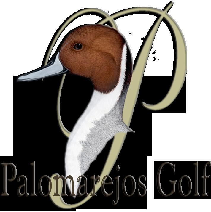Acuerdos y colaboraciones fisioterapia iPhysio: Palomarejos Golf